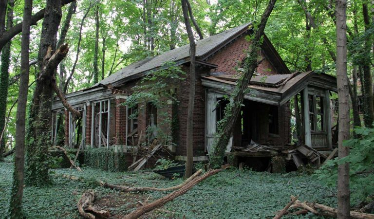The Haunting Abandoned Island In The Middle Of NYC